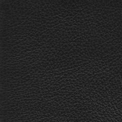 Leather_TrueBlack